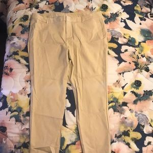 Never Worn Pixie Ankle Pant